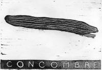 14_concombre.jpg